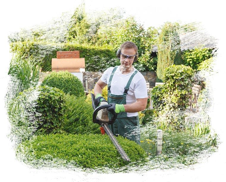 Der Fachbetrieb Gartenreich Patrick Schwab in Landau/Isar bietet professionelle Gartenlangzeitpflege an