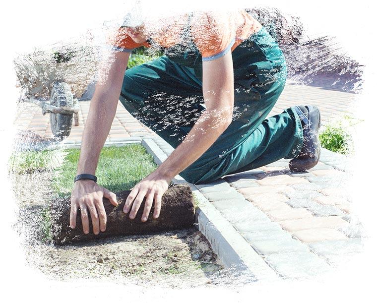 Der Fachbetrieb Gartenreich Patrick Schwab in Landau/Isar bietet professionelle Gartenumgestalung an