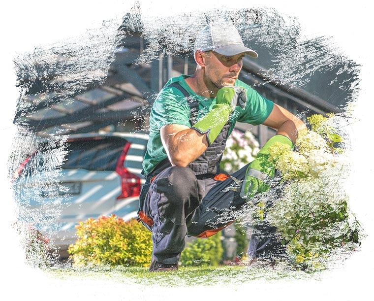 Der Fachbetrieb Gartenreich Patrick Schwab in Landau/Isar bietet professionelle Grünpflege an