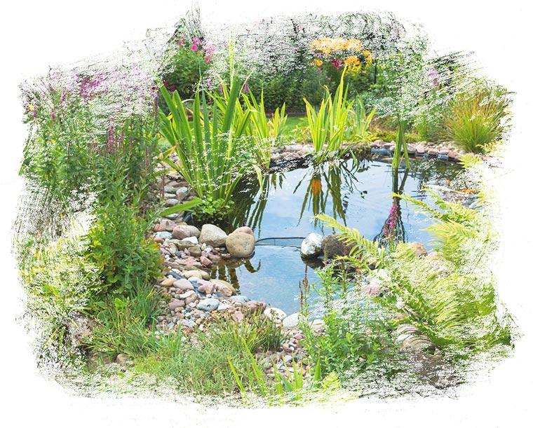 Der Fachbetrieb Gartenreich Patrick Schwab in Landau/Isar bietet professionellen Teichbau an